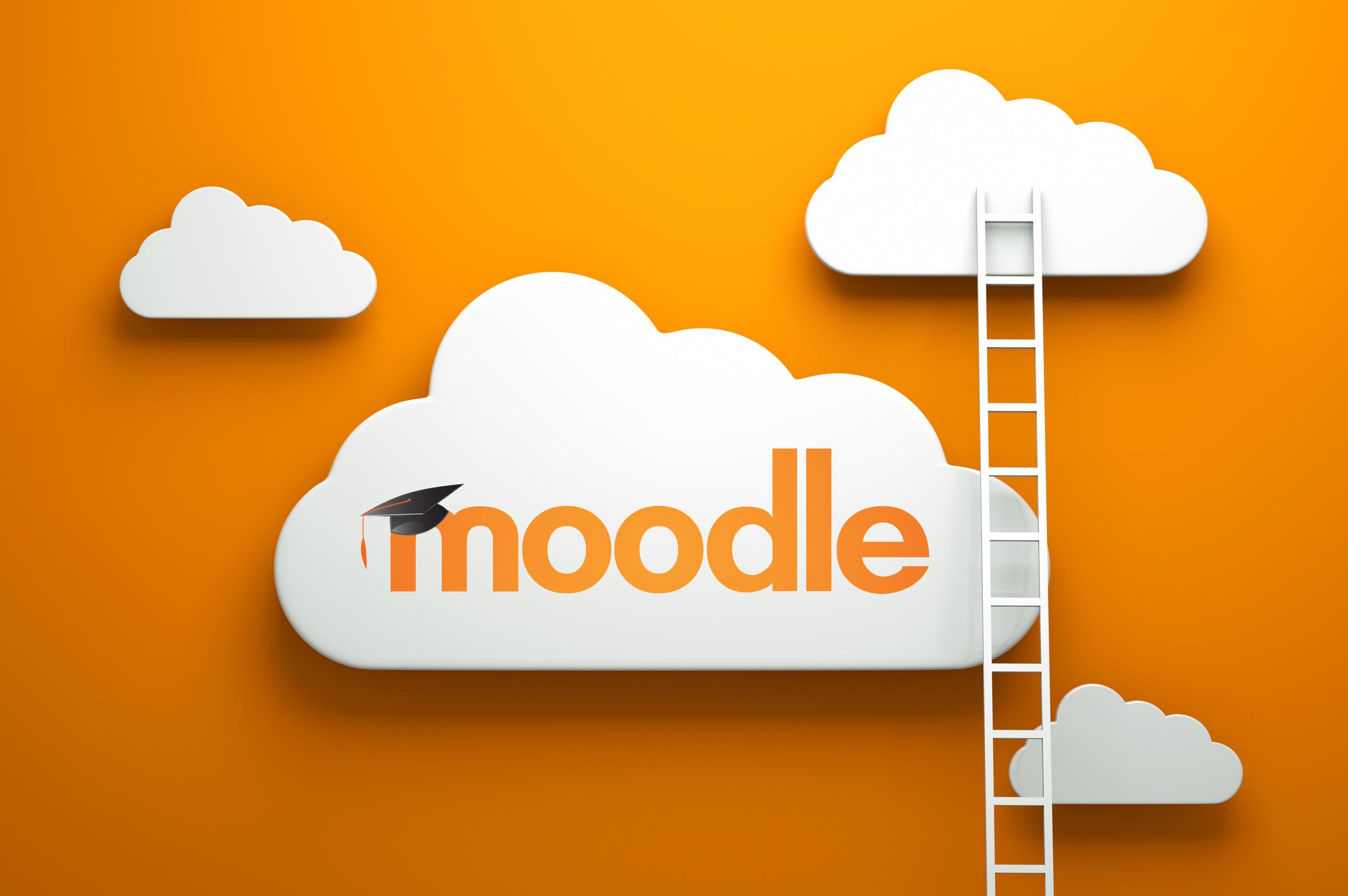 moodle-Feltex01
