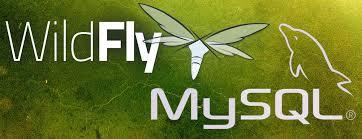 Configurar um Datasource no Servidor Wildfly